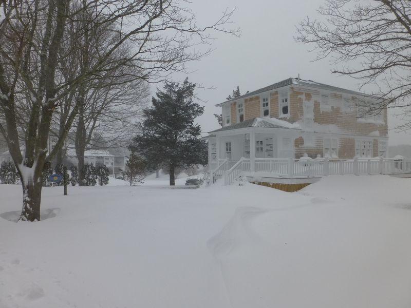 Katama in Winter